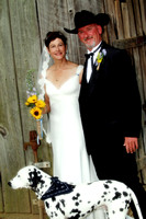 Lisa and Terry's Wedding